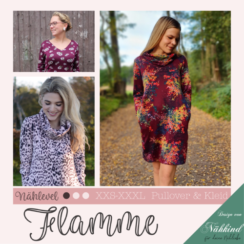 eBook Kleid & Pullover Flamme